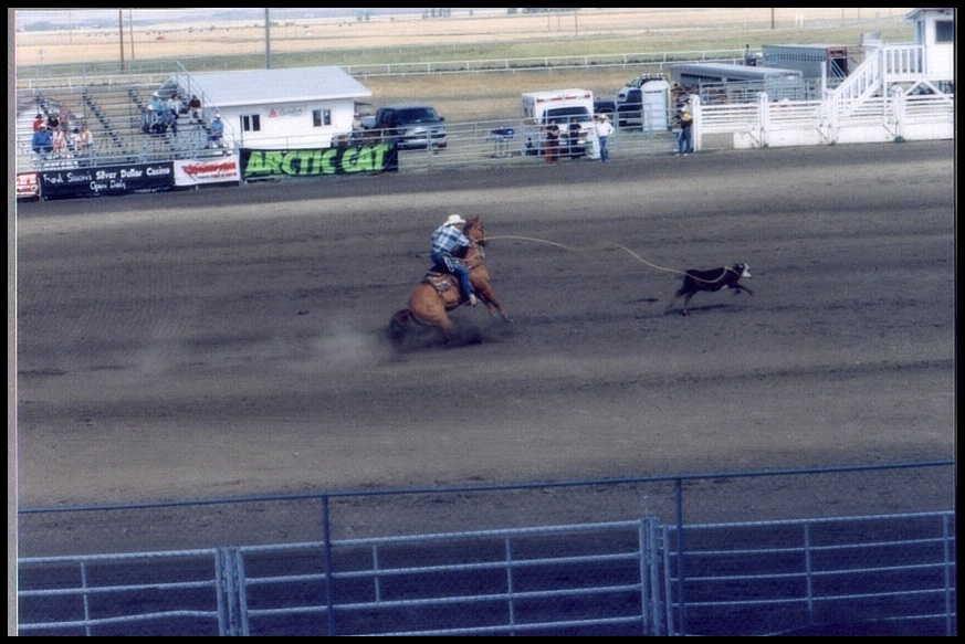 I. Senior Prorodeo High River