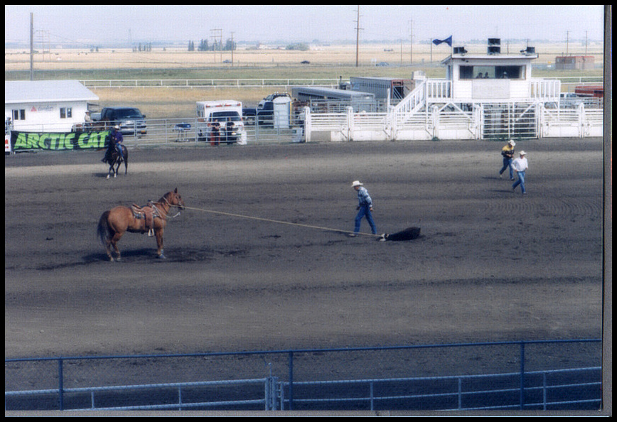 II. Senior Prorodeo High River